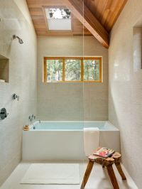 Tub inside shower | Bathrooms | Pinterest