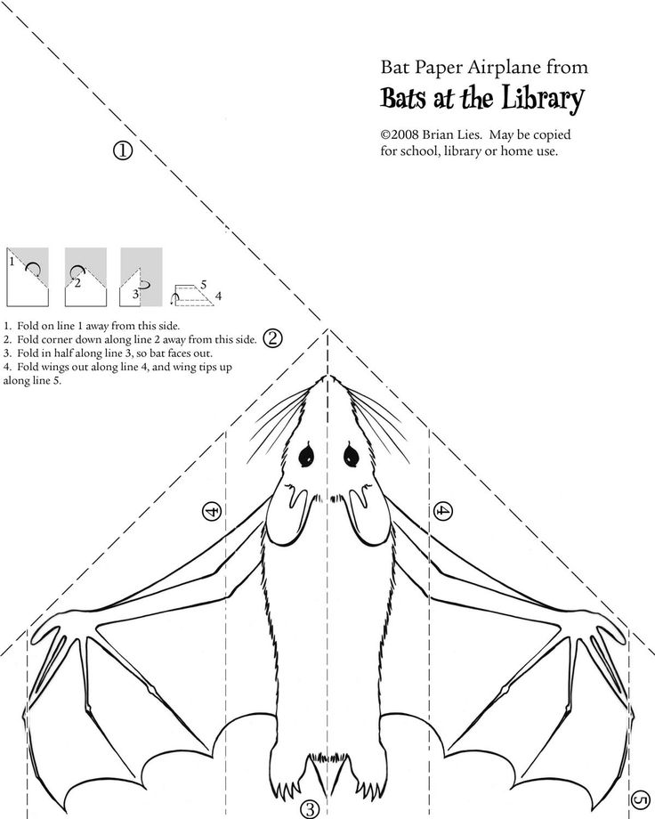 Bat paper airplane from