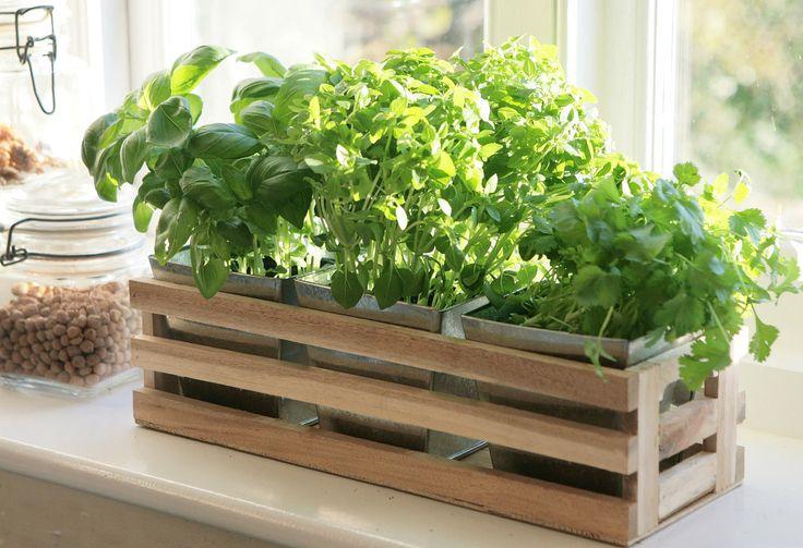 Details about Kitchen Herb Window Planter Box Wooden