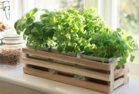 Details about Kitchen Herb Window Planter Box Wooden