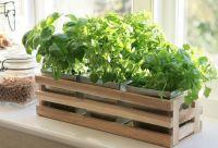 Details about Kitchen Herb Window Planter Box Wooden ...
