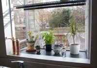 greenhouse window over kitchen sink | Kitchen Redo Ideas ...