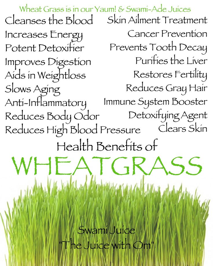 1000+ images about WheatGrass on Pinterest   Garden of ...