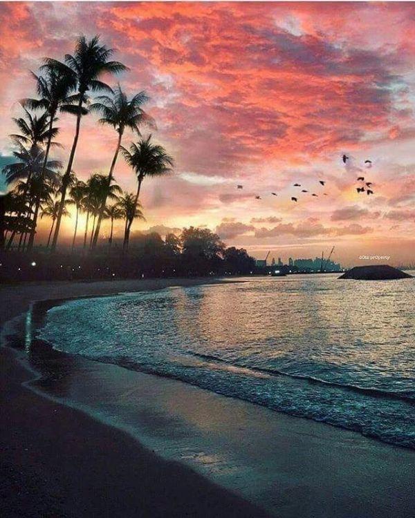 ideas beach scenery