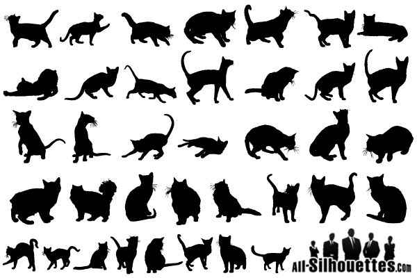 1000+ ideas about Cat Silhouette Tattoos on Pinterest