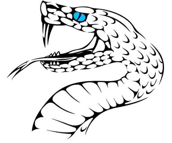 Snake tattoo, Snakes and Design on Pinterest