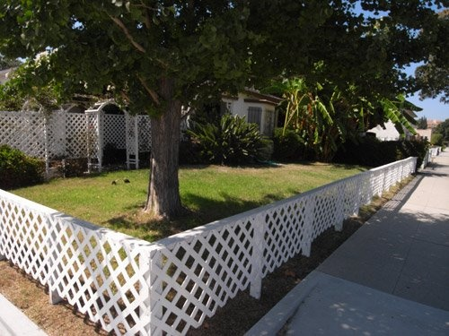 Short Fence To Keep The Neighborhood Dogs From Peeing And