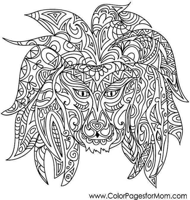 250 Best Adult Coloring Pages Images