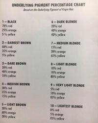 Best 25+ Hair toner ideas on Pinterest | Rose gold toner ...