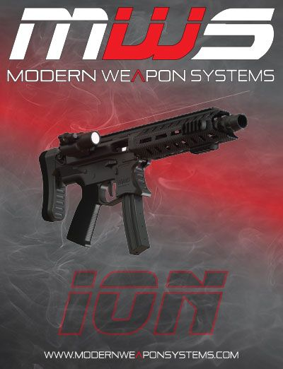 Modern Weapon Systems ION Submachinegun 22TCM Also