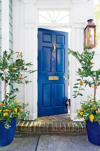 25+ best ideas about Front door plants on Pinterest