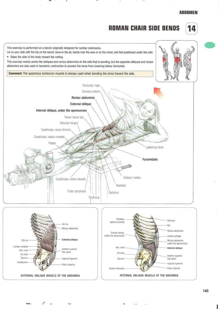 Strength training anatomy 14. Roman Chair Side Bends Abs