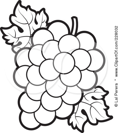 G Is For Grapes Alphabet Book Pinterest Interiors