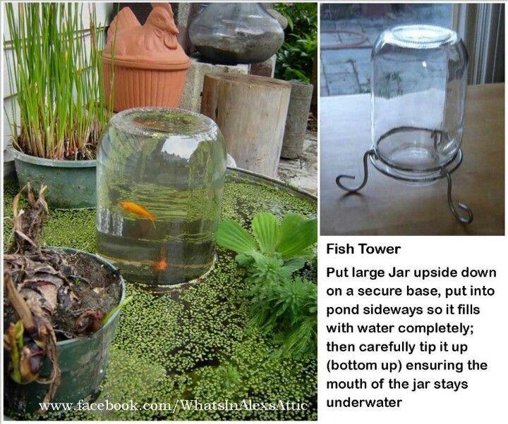 75 Best Images About Garden Ponds On Pinterest Backyard Ponds