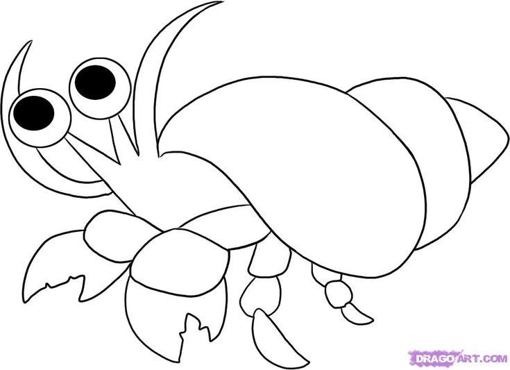 25+ best ideas about Hermit crab crafts on Pinterest