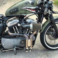 Photo. Harley Harley-Davidson Harley Davidson sportster ...