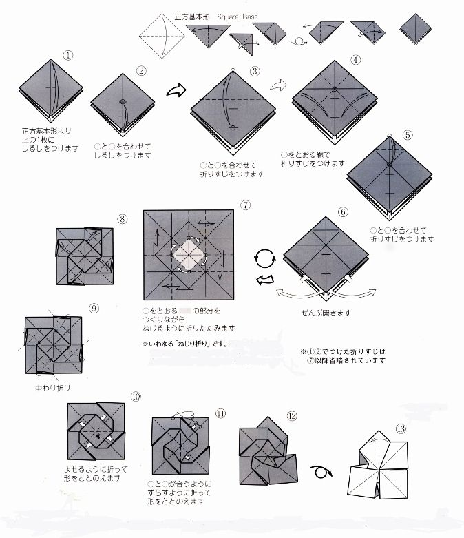 origami rose diagram image search results