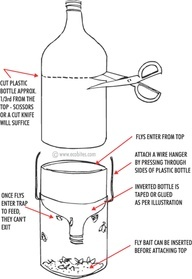 homemade stink bug trap. I used this in the tackhouse, it