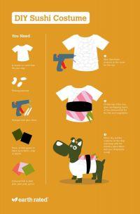 Best 25+ Sushi costume ideas on Pinterest | Sushi ...