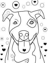 Staffordshire bull terriers, Bull terriers and Terriers on