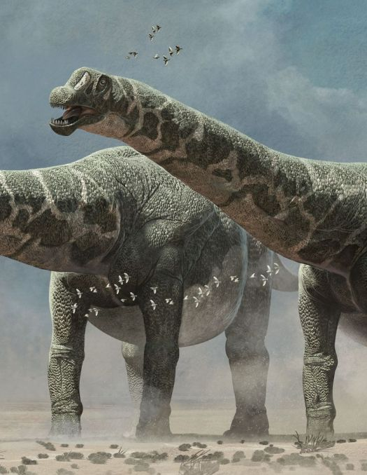 1000+ images about Prehistory on Pinterest | Tyrannosaurus ...