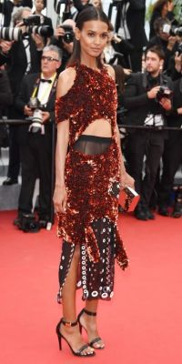 The Best of the 2015 Cannes Film Festival Red Carpet ...