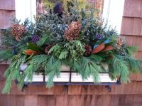 1000+ images about winter flower boxes on Pinterest ...