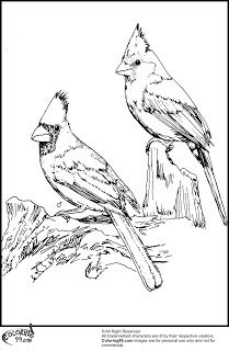 85 best images about PRINTABLE CARDINALS on Pinterest