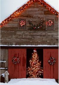 1000+ ideas about Christmas Scenes on Pinterest