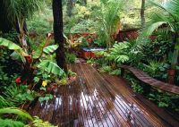 10+ ideas about Tropical Landscaping on Pinterest ...