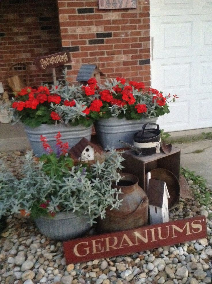 25 Best Ideas About Red Geraniums On Pinterest Geraniums Red
