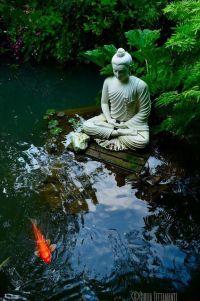 25+ best ideas about Garden ponds on Pinterest | Pond ...