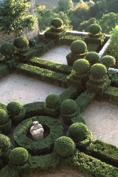 The 433 Best Images About Garden Topiary On Pinterest Gardens