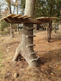 Outdoor for Kids diy | Simple And Cute DIY Tree House For ...