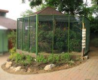 1000+ images about Raising Poultry on Pinterest | Raising ...