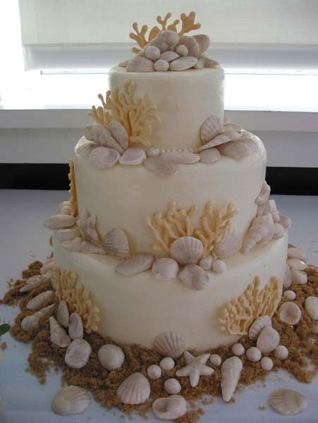 52 Best Images About Sea Shell Cakes On Pinterest