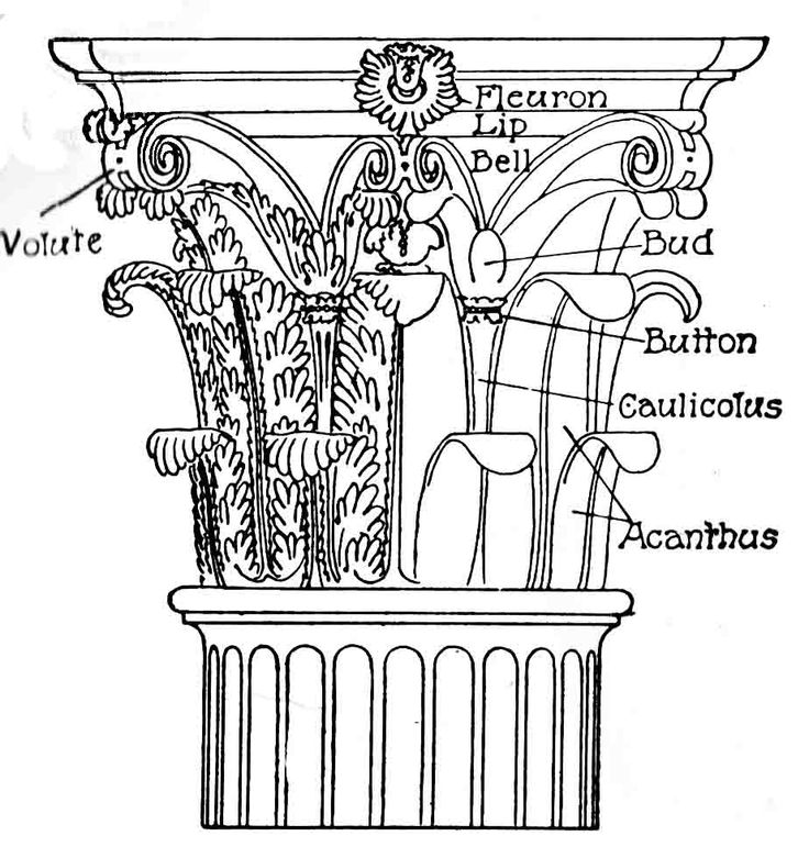 17 Best images about Volute Corinthian order on Pinterest