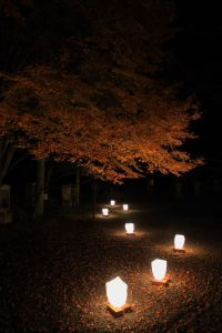 "Want - Japanese Garden lights | The Work in Progress ""city ..."