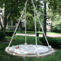 Best 20+ Trampoline swing ideas on Pinterest