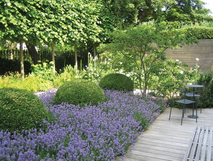 25 Best Ideas About Hill Garden On Pinterest Yard Landscaping