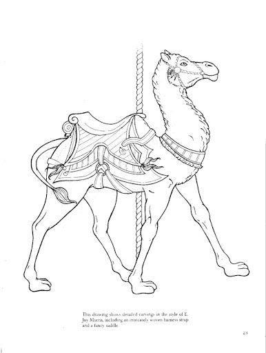 84 best Camels images on Pinterest