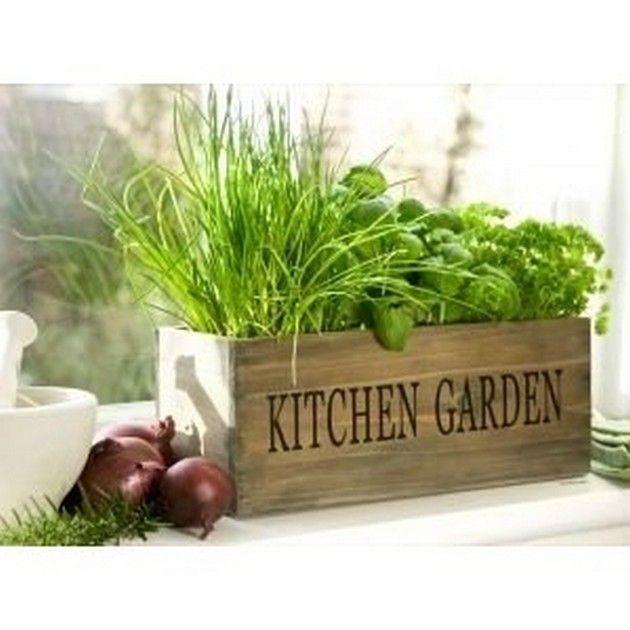Best 25 Kitchen Herb Gardens Ideas On Pinterest Kitchen Herbs