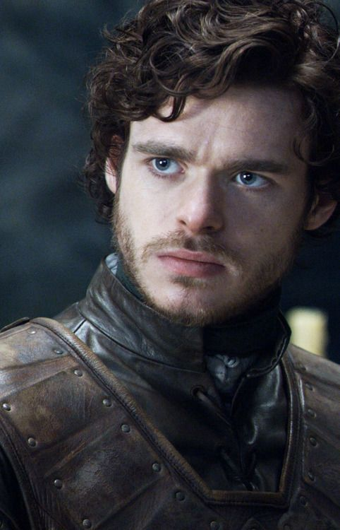 Lord Robb Stark of Winterfell | A Song of Ice and Fire 2 ...