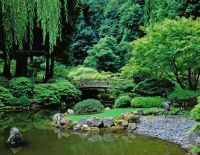 622 best images about Japanese Gardens on Pinterest ...