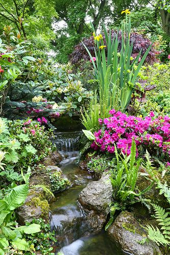 25 Best Ideas About Backyard Stream On Pinterest Landscape