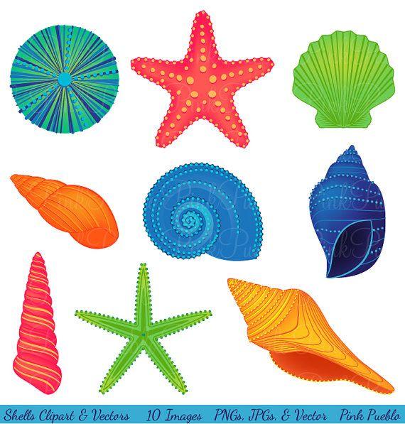 Conchas Clipart Clip Art playa Océano viajes vacaciones