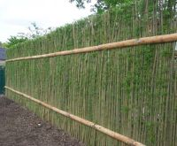 25+ best ideas about Natural Privacy Fences on Pinterest ...