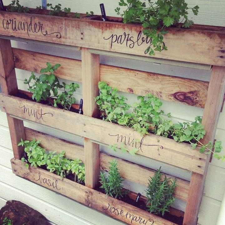 25 Best Ideas About Herb Garden Pallet On Pinterest Pallett