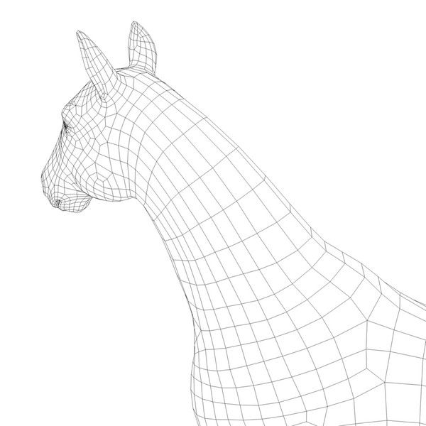1000+ images about Horse Animal by CG ARTStudio on