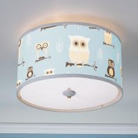 Owls Drum Shade Ceiling Light | Diffusers, Pink blue and Kid